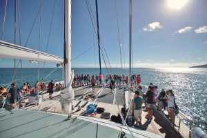 Sunset sailing cruise - Cairns inlet - Cairns