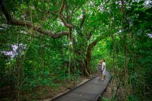 Green Island Day Trips - Cairns