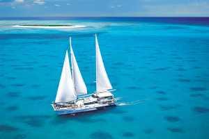 Michaelmas Cay Cruise with Ocean Spirit - Cairns