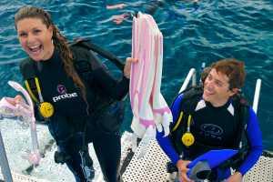 Silversonic Dive & Snorkel Adventure - Port Douglas